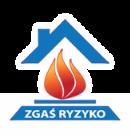 logo zr 1