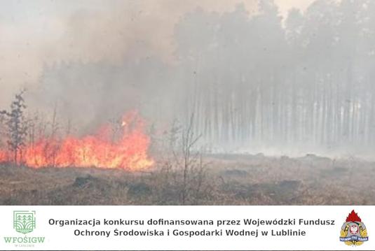 Stop pożarom lasów